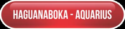 BT-HAGUANABOKA-AQUARIUS